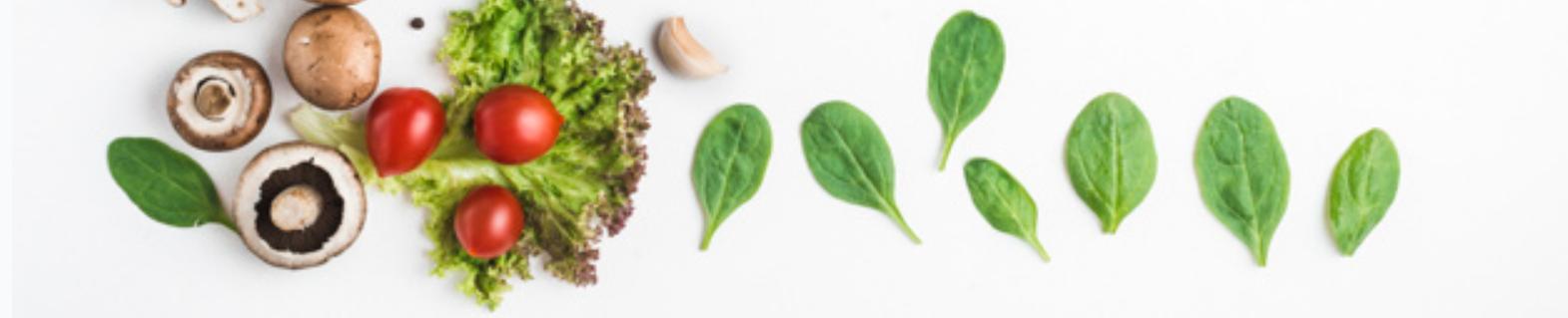 odchudzanie z dietetykiem rzeszów